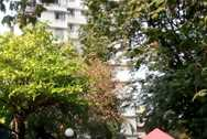 Main - Salvation Apartment, Prabhadevi
