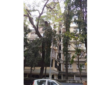 Flat for sale or rent in Kudrat, Khar West