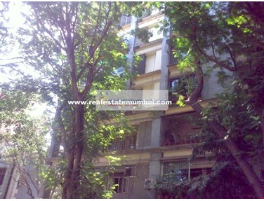 Flat on rent in Convent View, Bandra West