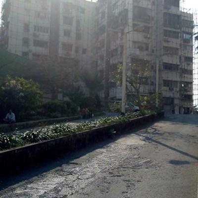Flat on rent in Poonam Apartment, Worli