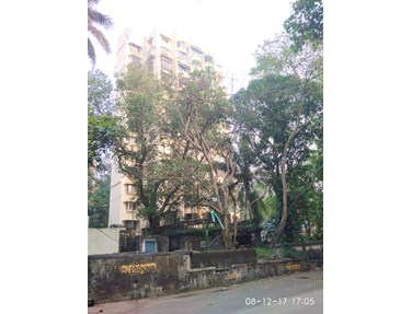 Flat on rent in Sea King, Bandra West