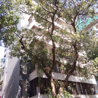 Flat on rent in Emporis, Bandra West