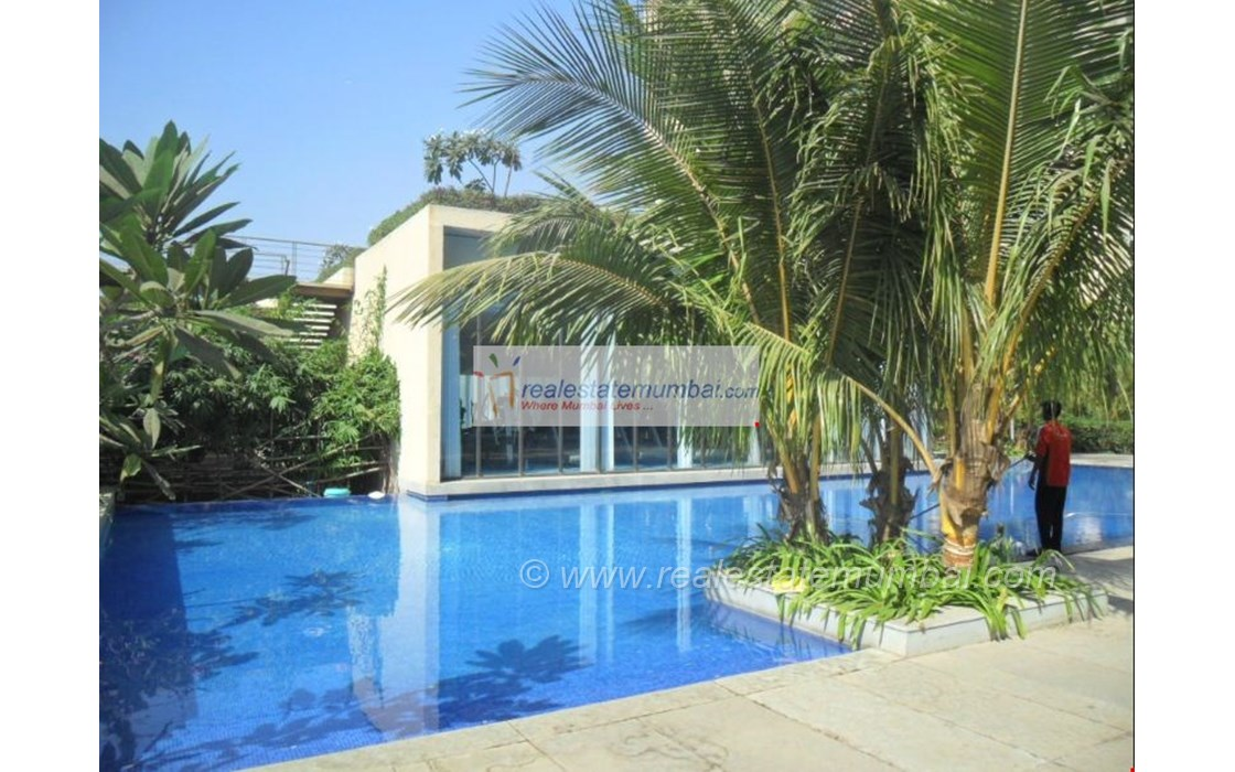 Swimming Pool - Oberoi Springs, Andheri West