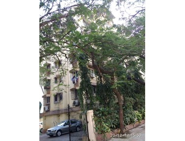 Flat on rent in Cassias, Bandra West