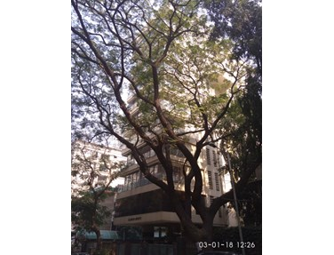 Glamour Heights, Bandra West