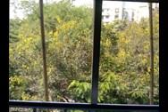 View - Green Gates, Bandra West