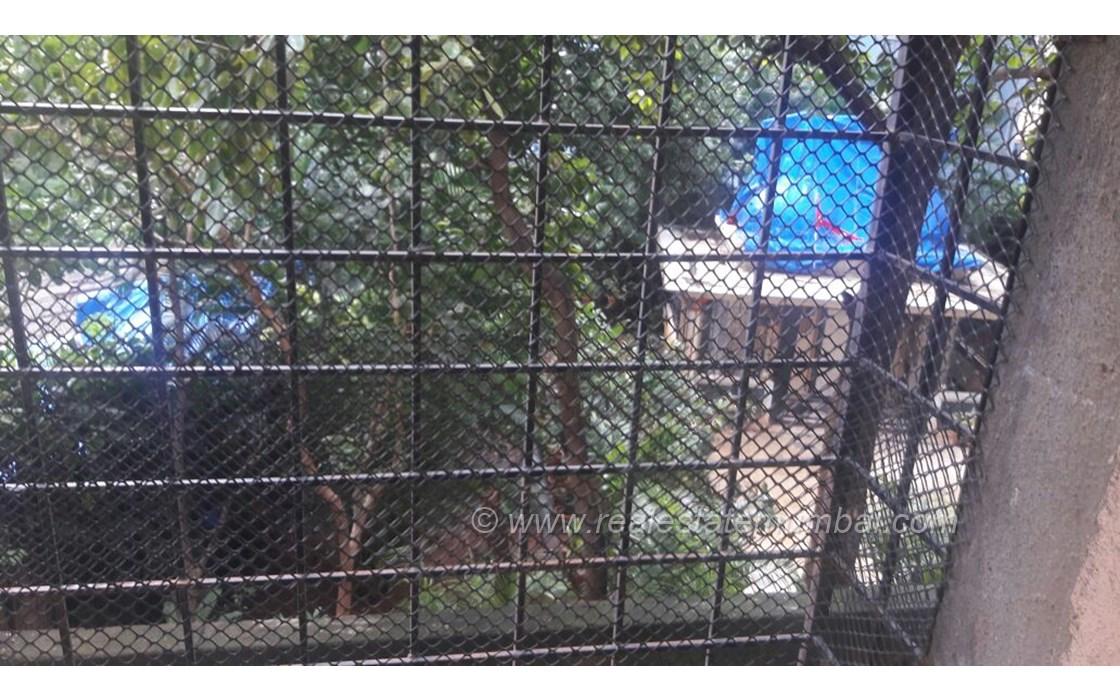 View - Akshay Girikunj, Andheri West