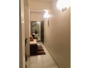 Living Room - Oyster Shell, Juhu
