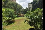 Garden - Royal Classic, Andheri West