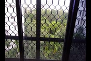 View1 - Silver Croft, Andheri West