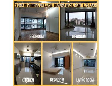 Flat on rent in Sunrise Apartment, Bandra West