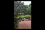 View - Orchid Enclave, Powai